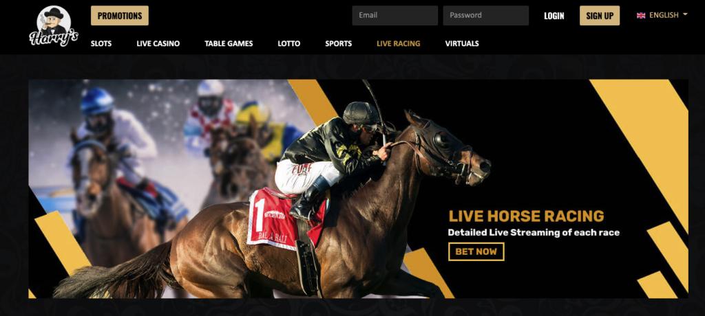 harrys betting site